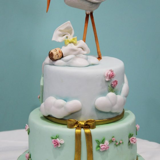 belle-aurore-cake-art-design-cicogna